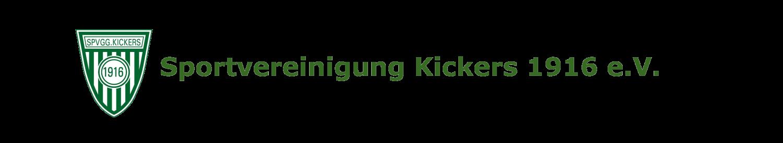 Kickers 16